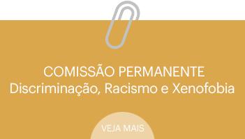 comision-discriminacion-racismo-xenofobia-pt