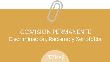 comision-discriminacion-racismo-xenofobia