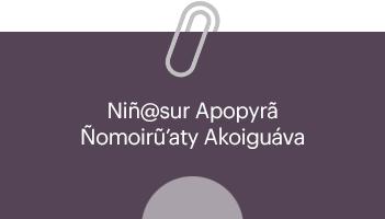 Comisión Permanente Iniciativa Niñ@sur